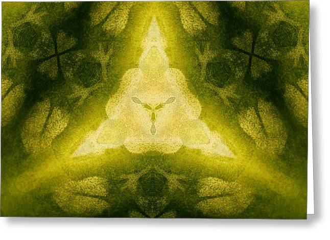 Gold Lime Green Greeting Cards - Green Floral Triangle Greeting Card by Linda Phelps