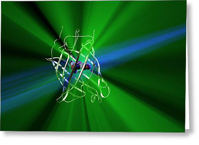 Green Jellyfish Greeting Cards - Green Fluorescent Protein Greeting Card by Phantatomix