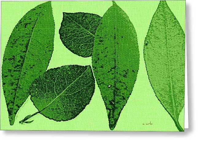 Avocado Leaves Greeting Cards - Green Foliage Graphic Greeting Card by Chris Berry