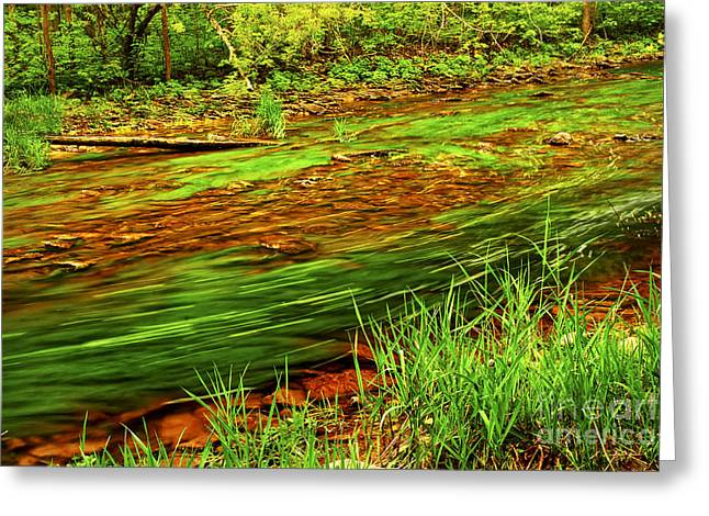 Flowing Greeting Cards - Green forest river Greeting Card by Elena Elisseeva