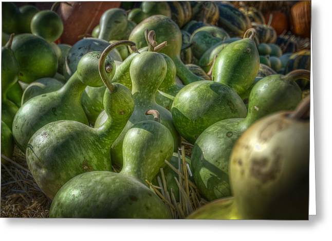 Patch Greeting Cards - Green Gourds Greeting Card by Noah Katz