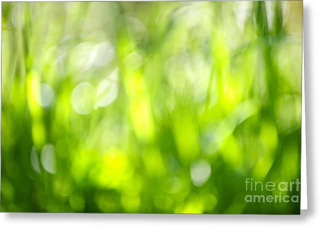 Green grass in sunshine Greeting Card by Elena Elisseeva