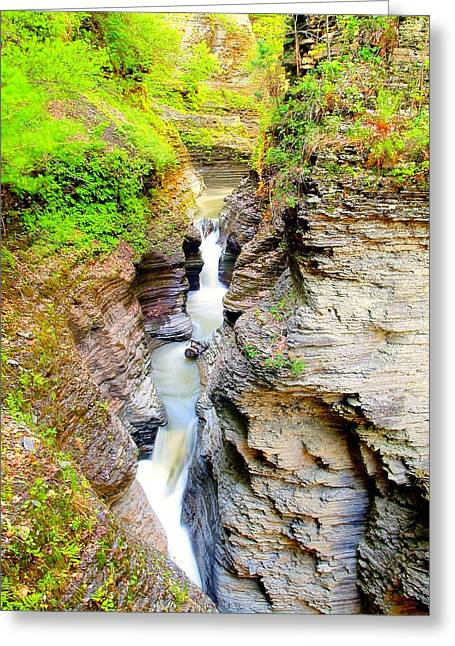 Finger Lakes Greeting Cards - Green in the Glen Greeting Card by Joshua House