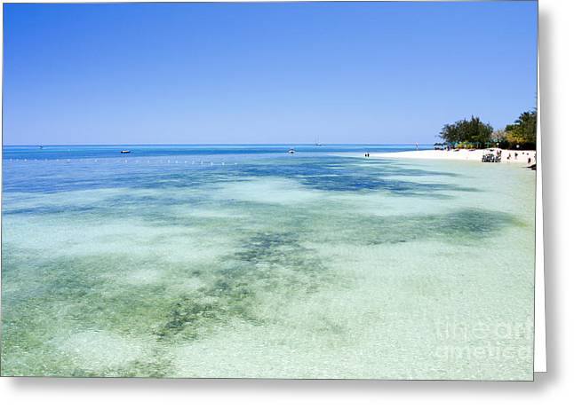 Green Cay Greeting Cards - Green Island National Park Greeting Card by Gal Eitan