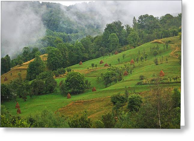 Eco-village Greeting Cards - Green Greeting Card by Mircea Costina Photography