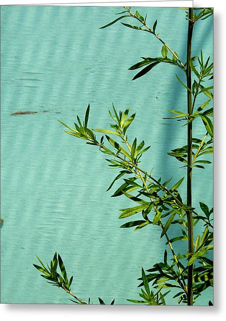 Art Ferrier Greeting Cards - Green on Aqua 1 Greeting Card by Art Ferrier