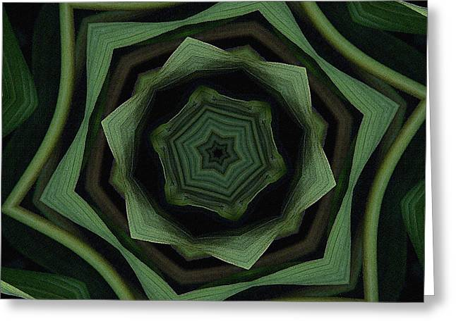 Olive Green Greeting Cards - Green on Green Greeting Card by Bonnie Bruno
