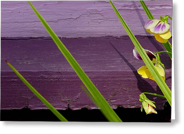 Art Ferrier Greeting Cards - Green on Purple 6 Greeting Card by Art Ferrier
