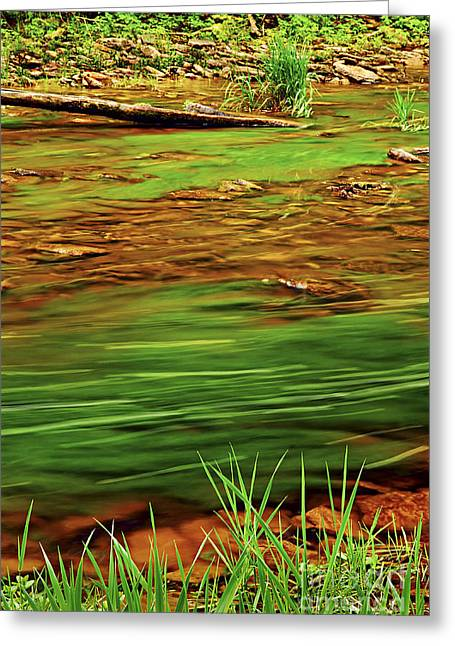 Flowing Greeting Cards - Green river Greeting Card by Elena Elisseeva