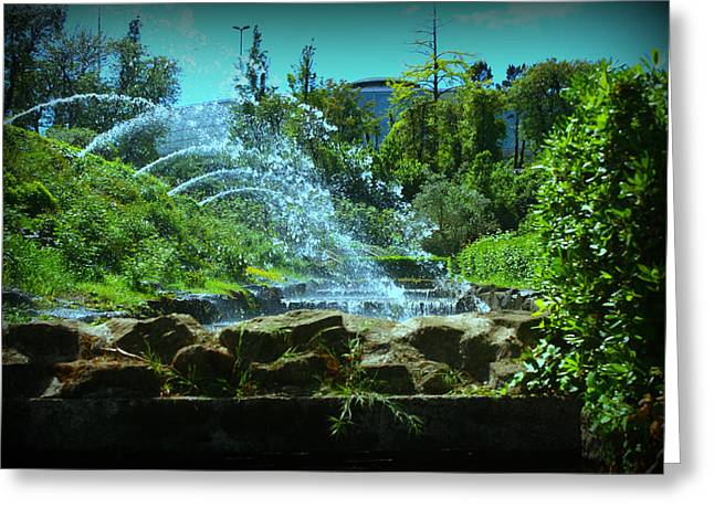 Green Scenery Greeting Card by Kevin Flynn