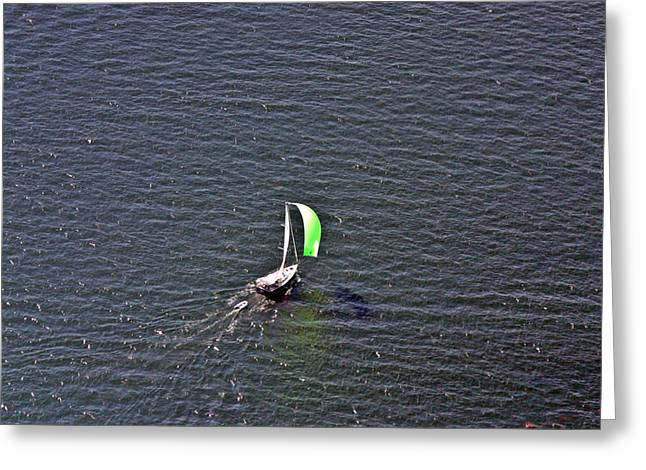 Wind In The Sails Greeting Cards - Green Spinnaker Sailing 2 Greeting Card by Duncan Pearson