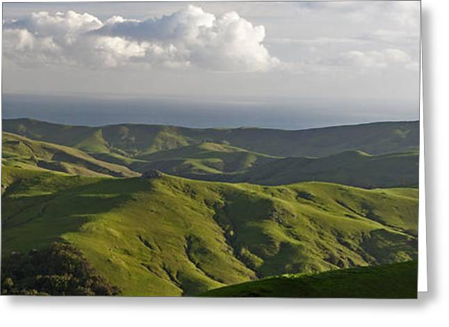 Cambria Greeting Cards - Green Valley Seascape 2 of 2 Greeting Card by Gregory Scott