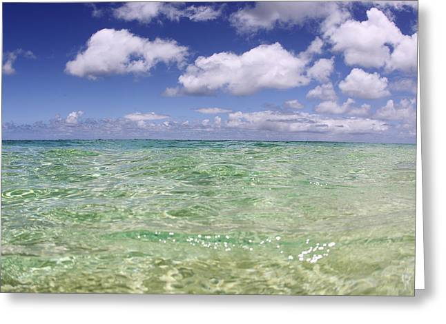 Green Water Seascape Greeting Card by Vince Cavataio
