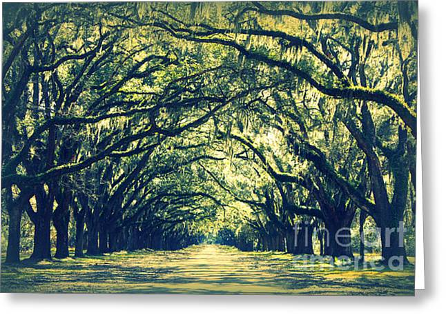 Old Country Roads Greeting Cards - Green World Greeting Card by Carol Groenen