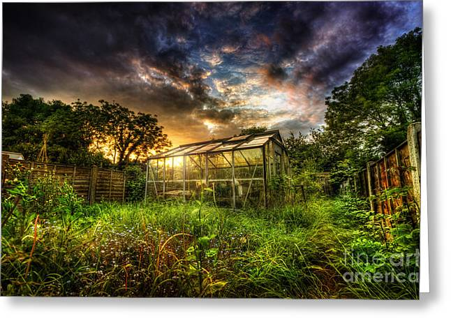 Greenhouse Effect Greeting Cards - Greenhouse Effect Greeting Card by Yhun Suarez