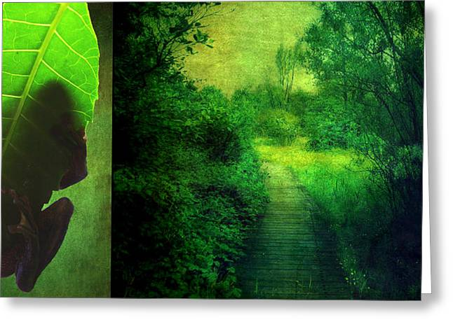 Recently Sold -  - Aimelle Prints Greeting Cards - Greens Greeting Card by Aimelle