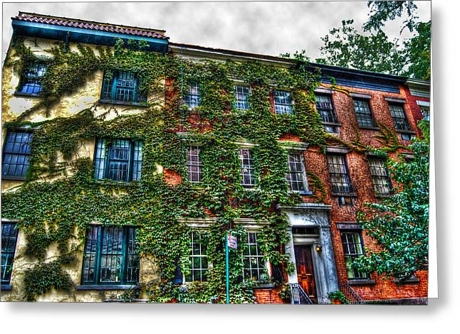 Townhouses Greeting Cards - Greenwich Village Ivy 2 Greeting Card by Randy Aveille