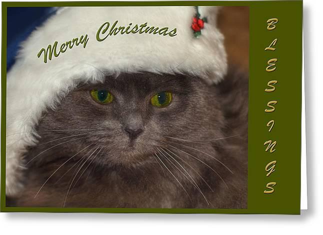 Cat Christmas Cards Greeting Cards - Grey Cat Santa 2 Greeting Card by Joann Vitali