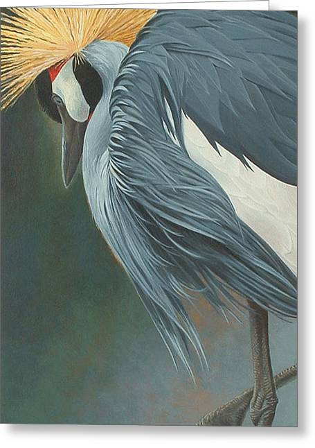 Close Up Paintings Greeting Cards - Grey Crowned Crane Greeting Card by Shawn Shea