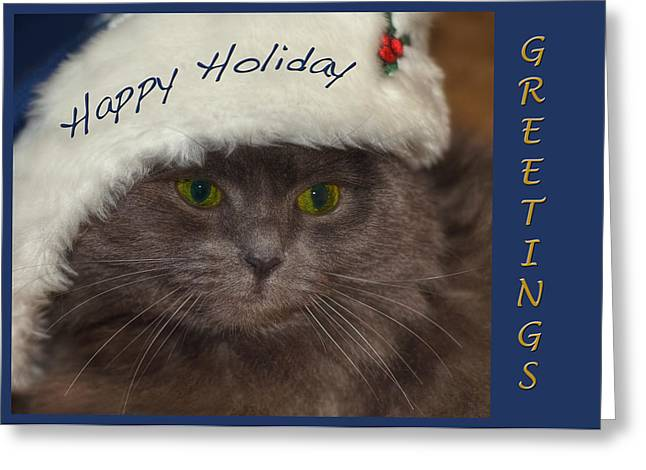 Cat Christmas Cards Greeting Cards - Grey Holiday Cat Greeting Card by Joann Vitali