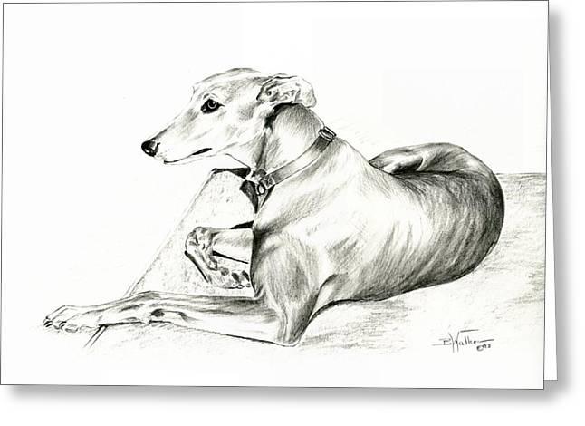 Graceful Drawings Greeting Cards - Greyhound Resting Greeting Card by Barbara Walker