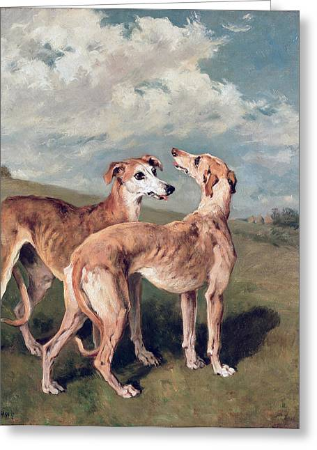 1843 Greeting Cards - Greyhounds Greeting Card by John Emms