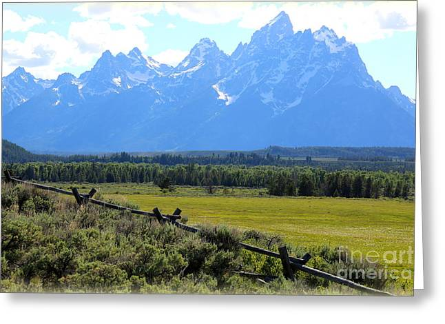 """high Peaks"" Greeting Cards - Grizzly Country with Soft Vignette Greeting Card by Carol Groenen"