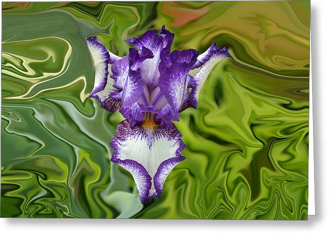 Contortions Greeting Cards - Groovy Purple Iris Greeting Card by Rebecca Margraf
