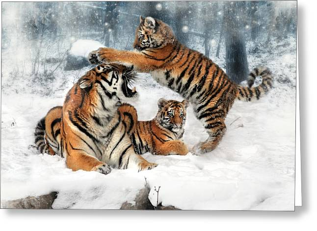 Tiger Digital Art Greeting Cards - Group Therapy Greeting Card by Julie L Hoddinott