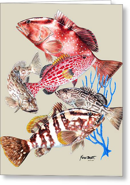 Kevin Brant Greeting Cards - Grouper Montage Greeting Card by Kevin Brant