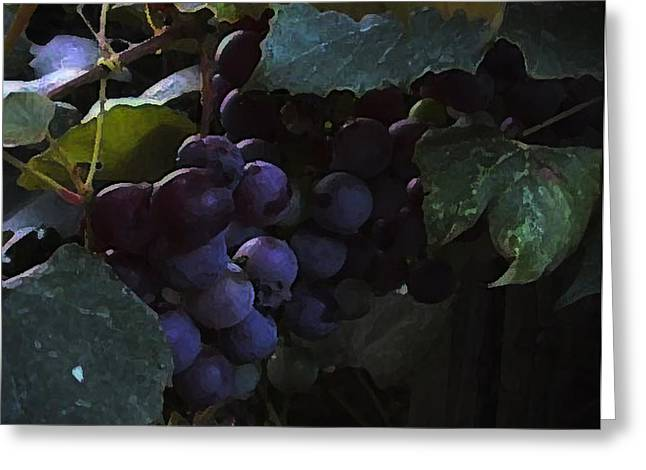 Purple Grapes Greeting Cards - Grrrrapes Greeting Card by Ross Powell