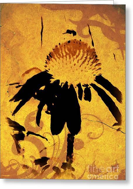 Maggie Vlazny Greeting Cards - Grunge Orange Daisy Greeting Card by Maggie Vlazny