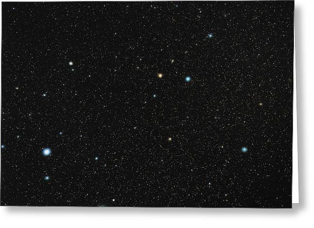 Constellations Greeting Cards - Grus Constellation Greeting Card by Eckhard Slawik