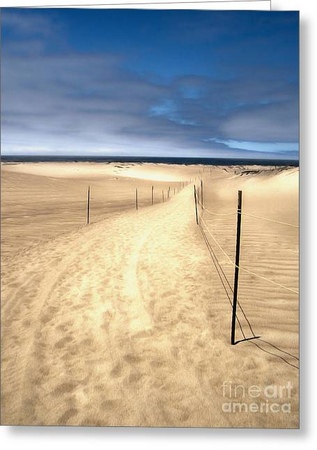 Gregory Dyer Greeting Cards - Guadalupe Dunes - 01 Greeting Card by Gregory Dyer