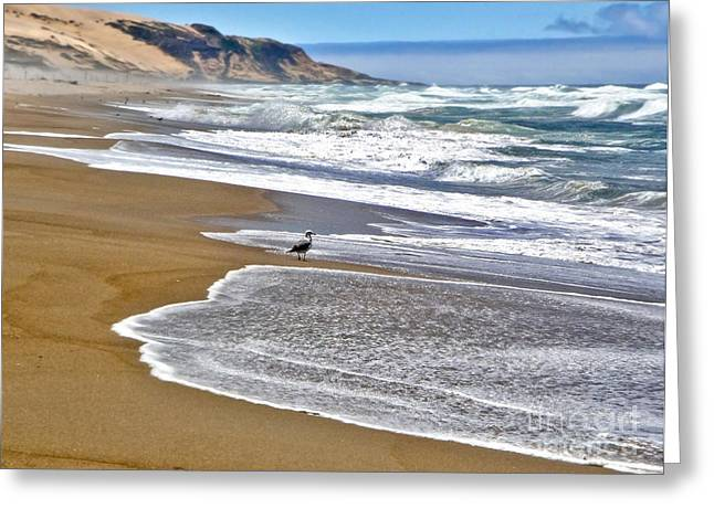 Gregory Dyer Greeting Cards - Guadalupe Dunes - 05 Greeting Card by Gregory Dyer