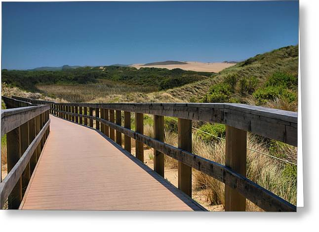 Pacific Ocean Prints Greeting Cards - Guadalupe-Nipomo Dunes Preserve Boardwalk I  Greeting Card by Steven Ainsworth