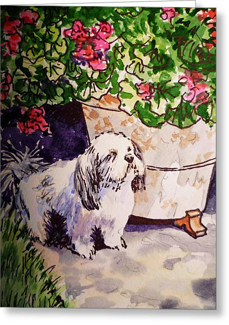 Sketch Book Greeting Cards - Guarding Geranium Sketchbook Project Down My Street Greeting Card by Irina Sztukowski
