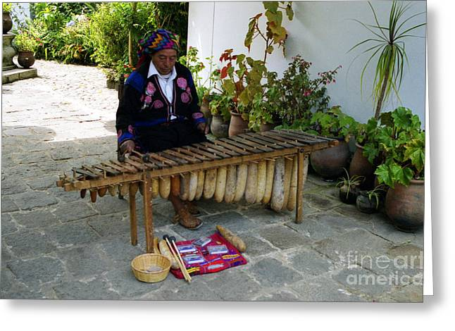 Xylophone Greeting Cards - Guatemalan Musician Greeting Card by Nettie Pena