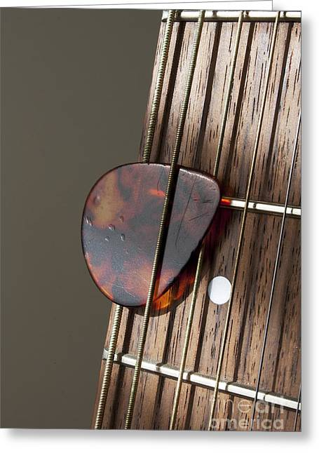 Dappled Light Greeting Cards - Guitar Neck Frets and Pick Greeting Card by Gordon Wood