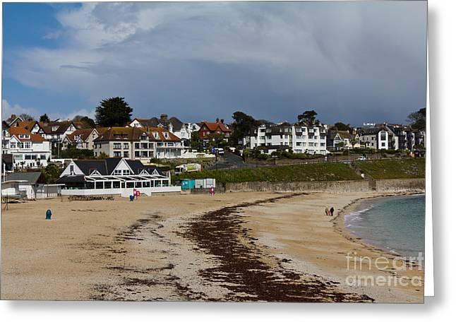 Gyllyngvase Beach And Cafe Greeting Card by Brian Roscorla