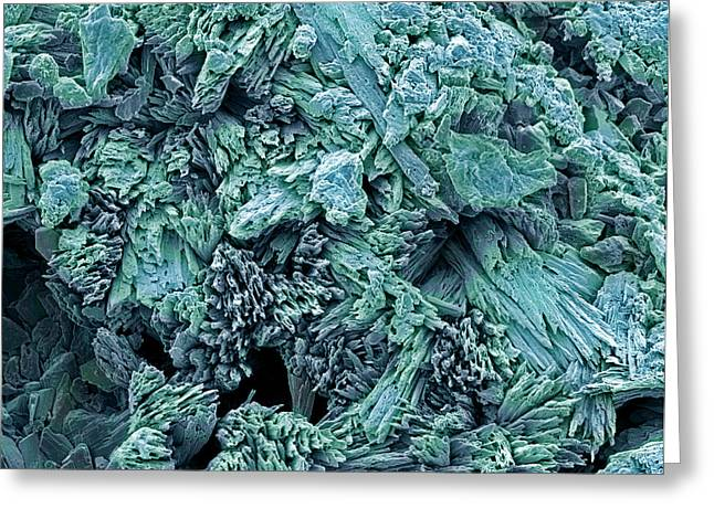 Gypsum Crystals, Sem Greeting Card by Steve Gschmeissner