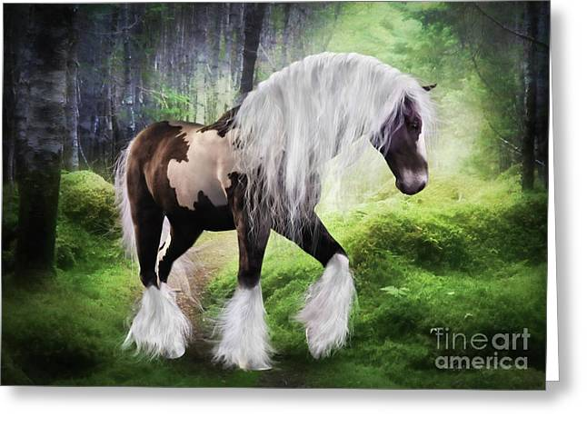 Gypsy Vanner Horse Greeting Cards - Gypsy Vanner Greeting Card by Shanina Conway