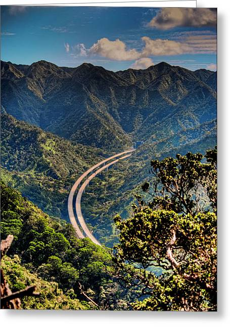 H-3 From The Aiea Loop Trail Greeting Card by Dan McManus