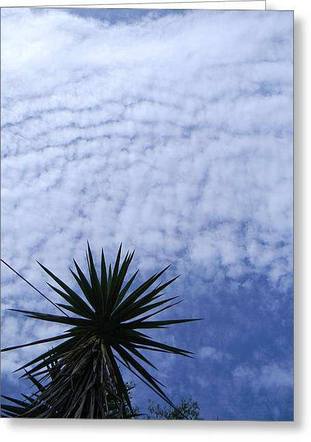 Bayonet Greeting Cards - HAARP and the Bayonet  Greeting Card by Christy Usilton
