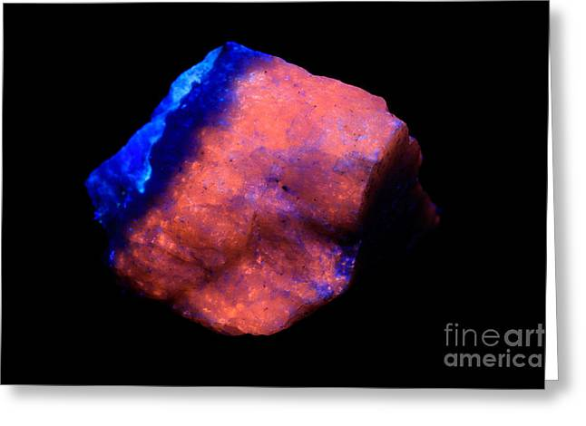 Ultraviolet Light Greeting Cards - Hackmanite In Uv Light Greeting Card by Ted Kinsman