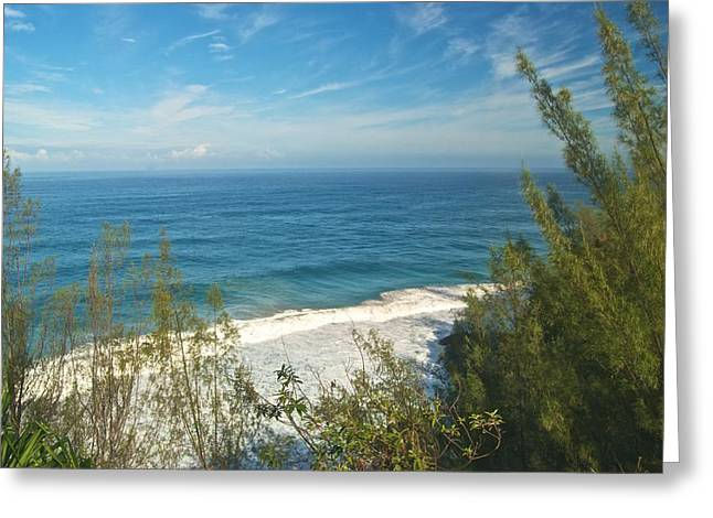Ocean Vista Greeting Cards - Haena State Park overview Greeting Card by Michael Peychich