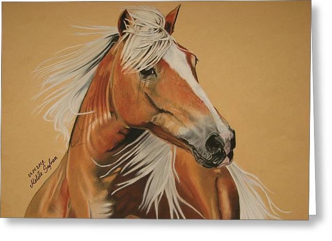 Horse Images Pastels Greeting Cards - Haflinger  Greeting Card by Melita Safran