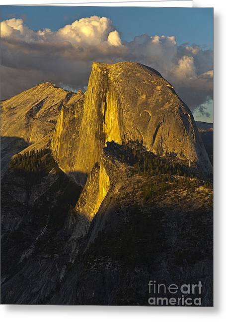 Half Dome At Sunset Greeting Card by Rodney Cammauf