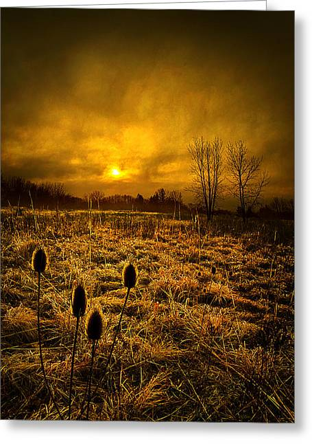 Geographic Greeting Cards - Halfway Gone Greeting Card by Phil Koch