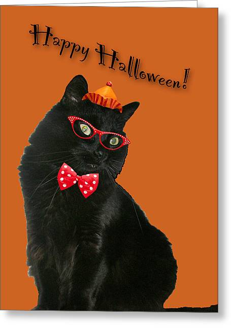 Mother Nature Greeting Cards - Halloween Card - Black Cat Ready to Party Greeting Card by Mother Nature